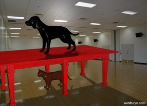 the black dog is on a red  table in a white room. UNDER THE TABLE THERE IS A CAT