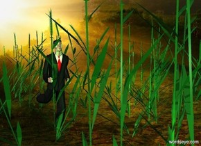 a 1st 8 feet tall grass.a man is -10 inches behind the 1st grass.a 2nd 8 feet tall grass is -15 inches behind the man.a 3rd 8 feet tall grass is -25 inches right of the man.a 4th 8 feet tall grass is -20 inches left of the man.a 5th 8 feet tall grass is -15 inches behind the 2nd grass.a lime light is in front of the 1st grass.a 6th 8 feet tall grass is -15 inches right of the 3rd grass.it is facing east.a 7th 8 feet tall grass is -10 inches right of the 2nd grass.a yellow light is behind the 2nd grass.