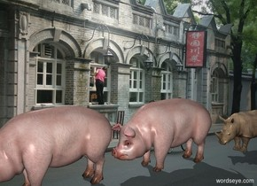 The huge pig is 1 foot in front of the rhinoceros in China. Another huge pig is in front of the pig.