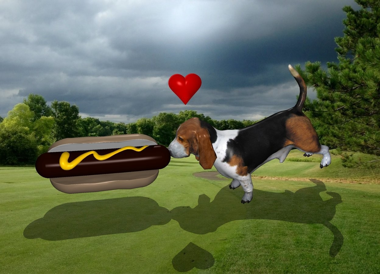 Input text: the large hotdog is -3 inches in front of the second dog.it is facing right.the hotdog is 2 inches above the ground.  the second dog is leaning forward. the second dog is 6 inches in the ground. the tiny heart is behind and 5 inches above the hotdog. it is facing left.