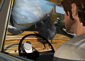 a [road] car. sky is [road]. ground is invisible. sky leans 45 degrees to the back. a 4.5 foot tall person is -6 feet in front of and -4.5 feet left of the car. his shirt is dull gray. a dull african gray parrot is -4 feet in front of and -2 feet above the car. it faces back. camera light is black. a linen light is -1 foot above the car. a tan light is 10 feet right of and -1 foot above the person.