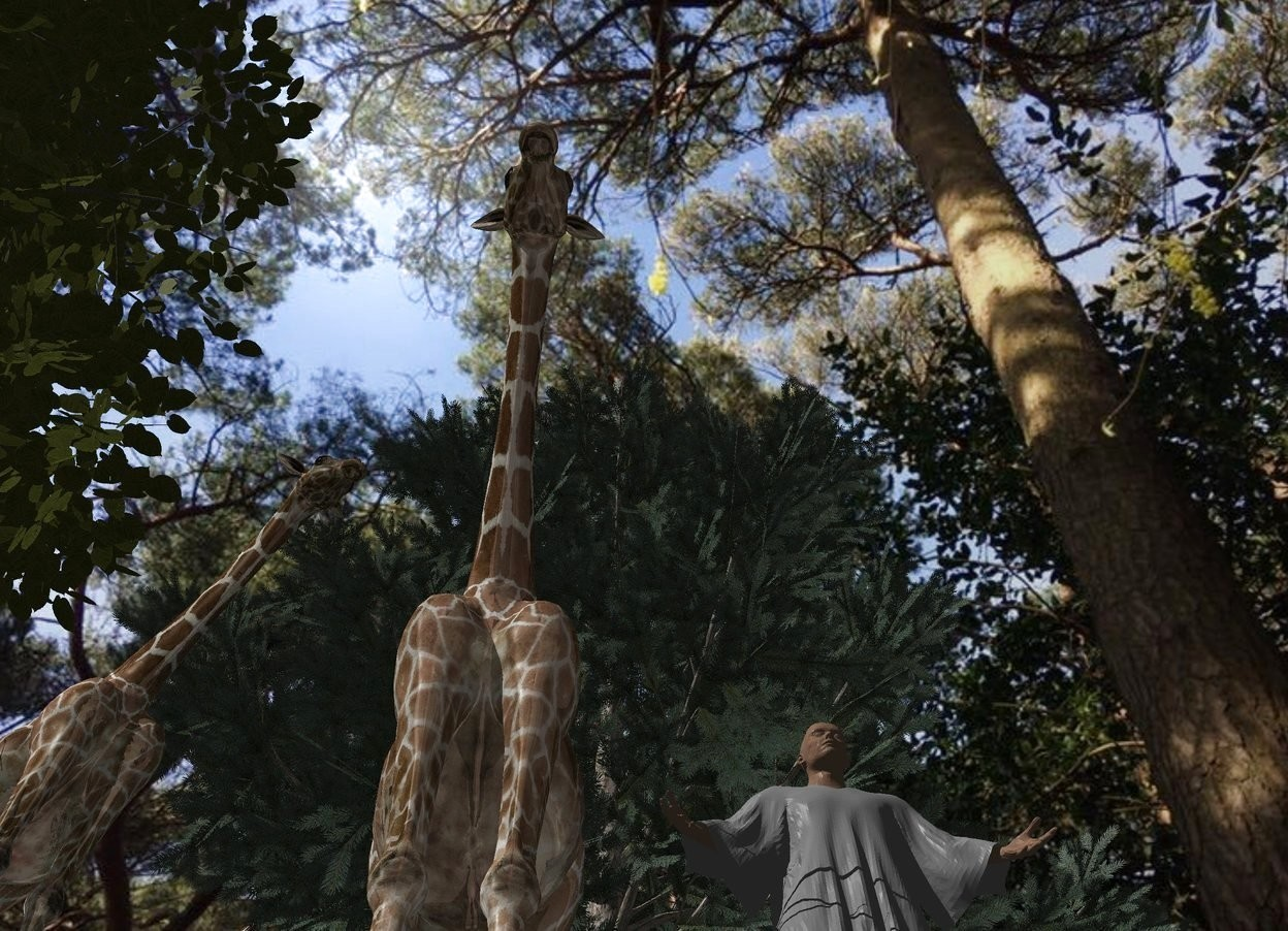 Input text: image-14804 backdrop. A tree is left of a tree. Camera light is black. A 20% shiny giraffe is right of the tree. A 20% shiny giraffe is in front of and -27 feet above the giraffe. It is facing southwest. A large man is right of and -11 feet above the giraffe. He is facing southwest.