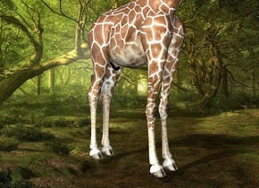 Fantasy backdrop. The giraffe is -12.3 feet behind the hedgehog. the hedgehog is 6.4 feet above the bottom of the giraffe.  it is leaning 140 degrees to the back. The shadow plane.