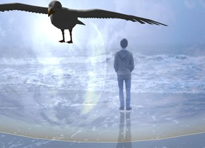 The shiny image  backdrop. camera light is black.  a seagull. sky.