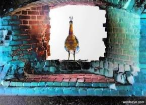image-14229 backdrop. a bird.