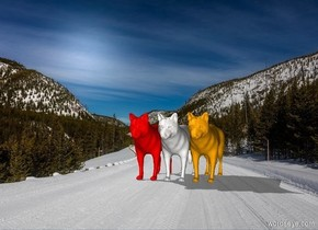The winter backdrop. The first marble wolf. The shadow plane. A second red wolf is to the left of the first wolf. A third orange wolf is to the right of the first wolf