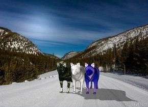 The winter backdrop. The first marble wolf. The shadow plane. A second checkerboard wolf is to the left of the first wolf. A third neon wolf is to the right of the first wolf.