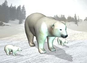 snow backdrop.a 1st bear.a 2nd tiny bear is 1 feet left of the 1st bear.it is facing southeast.pale shadow plane.the sun's altitude is 75 degrees.a 3rd tiny bear is 1 feet right of the 1st bear.a 40% aqua light is 3 feet in front of the 1st bear.