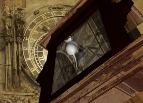 a shiny clock.a mouse is -2 inches in front of the clock.it is face up.the mouse is -1.5 feet above the clock.clock backdrop.the mouse is facing the clock.the sky is clock.a clock is behind the mouse.