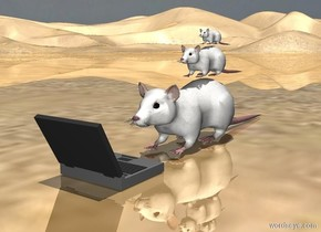 the computer is on the ground. a giant rat is in front of the computer. the giant rat is facing north. the computer is facing south. a big rat is on the giant rat. a rat is on the big rat. the ground is shiny. it is noon.