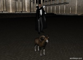 a dracula is on a sheep. it is night