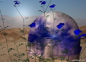 a flower.desert backdrop.a 6 feet tall head is behind the flower.the head is fantasy.