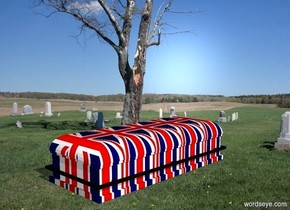 The  image  backdrop. a coffin.the coffin is flag.