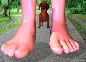 a 1st foot.a 2nd foot is 2 inches left of the 1st foot.the 2nd foot is -10 inches in front of the 1st foot.pale shadow plane.a rust light is 1 feet in front of the 1st foot.a blue light is 1 feet in front of the 2nd foot.a dog is 2 feet behind the 1st foot.it is left of the 1st foot.
