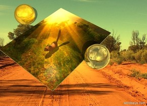 Art canvas. Lemon sun. A huge chipmunk is -3 feet right of and -4 feet in front of the canvas. Camera light is black. A cream light is left of and 2 feet above the chipmunk. A large silver sphere is right of the canvas. A large gold sphere is below the sphere. The azimuth of the sun is 135 degrees.