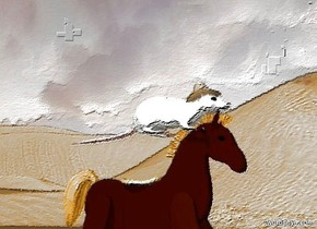 a tiny hat is -.15 foot above and -.475 foot in front of a large animal. the animal is -.225 foot above and -2.5 feet in front of a horse.  ground is 1000 feet wide.