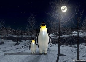 a [moon] backdrop.a 1st 30 inch tall penguin.the 1st penguin is facing north.a 2nd 15 inch tall penguin is -2 inch right of the 1st penguin.the 2nd penguin is facing north.