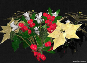 sky is black.ground is invisible. crown of thorns.the crown of thorns leans 90 degrees to the front.a cyclamen is -10 inch left of the crown of thorns.a 1st 80% dim poinsettia is -5 inch right of the crown of thorns.the leaf of the 1st poinsettia is silver.a 2nd 60% dim poinsettia is -5 inch left of the crown of thorns.the leaf of the 2nd poinsettia is green.