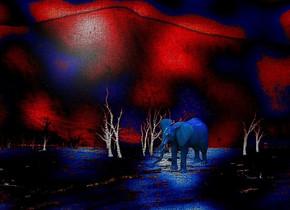 a [cw] backdrop.a 50 inch tall 70% dim petrol blue elephant.the elephant is facing southwest.a 1000 inch tall  blue illuminator.