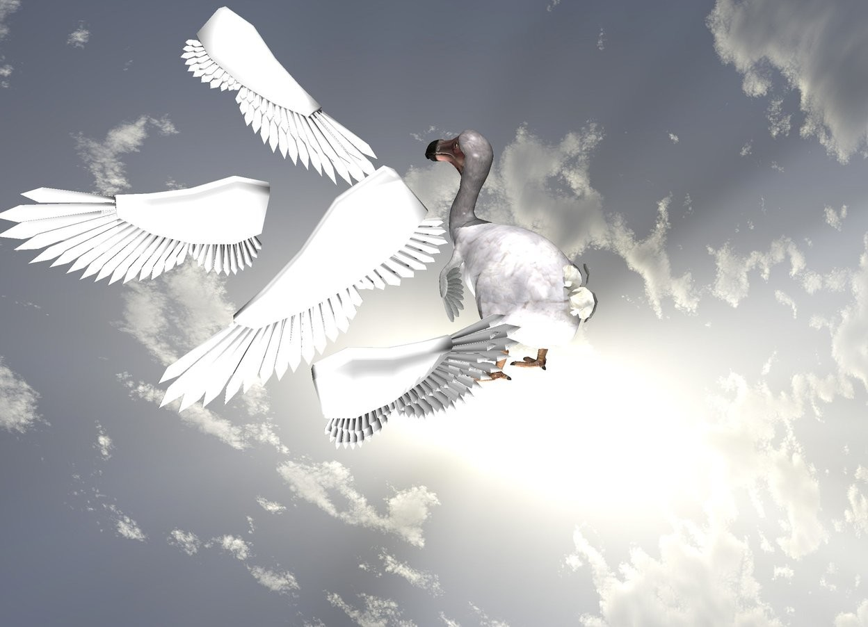 Input text: it is noon. ground is invisible. sky leans 90 degrees to the front.  a 1st white bird. a 2nd white bird is 1 feet in front of and -3 feet right of and -1 foot above the 1st bird. it faces back. a dodo.
