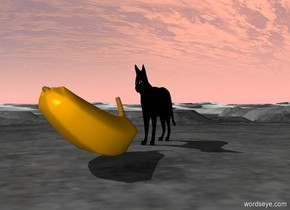There is a very wide enormous black cat. There is a very enormous banana in front of the cat.