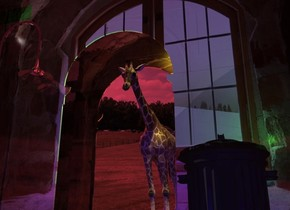 A 53 feet high giraffe is 3 feet behind a 20% shiny flat window arch. It is leaning forward. A 60 feet high silver street lamp is in front of and -35 feet left of the arch. A flat silver arch is 20 feet behind the arch. Camera light is navy. The sun is crimson. A yellow light is in front of and above and right of the giraffe. Ambient light is brown. The sky is cloud. A light is left of and above the street lamp. A 25 feet high trash can is 30 feet right of the street lamp. 2 green lights are right of and above the trash can.