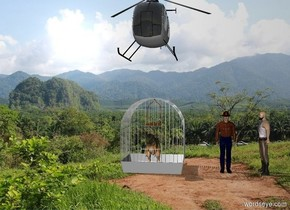 There is a tiny T-rex in a giant cage in the forest. There is a man 3 feet to the right of the cage. The second man is 2 feet to the right of the man. The second man is facing the cage. There is a helicopter 3 feet above the cage.