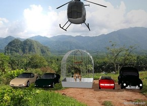 There is a tiny T-rex in a giant cage in the forest. a Small car is 1 feet to the right of the cage. The second small car is 1 feet to the right of the car. a helicopter is 3 feet above the cage. a third small car is 1 foot to the left of the cage. a fourth small tan car is 1 foot to the left of the third car.