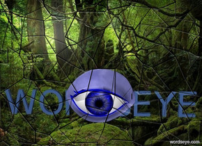 "a [je] backdrop.a 4 inch tall blue eye.a 2 inch tall   delft blue ""WORDSEYE"" is behind the eye."