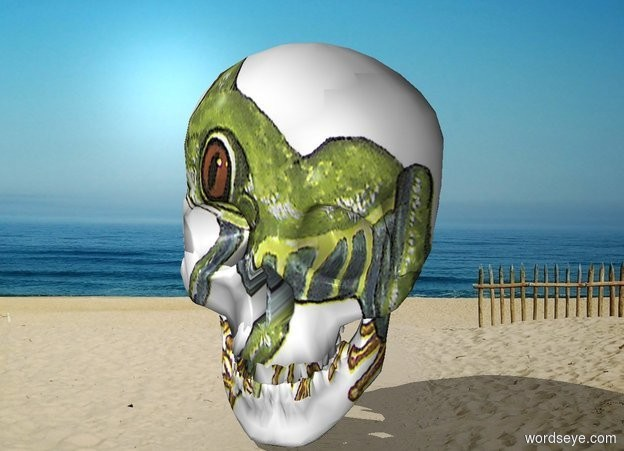 Input text: The frog skull is on the beach
