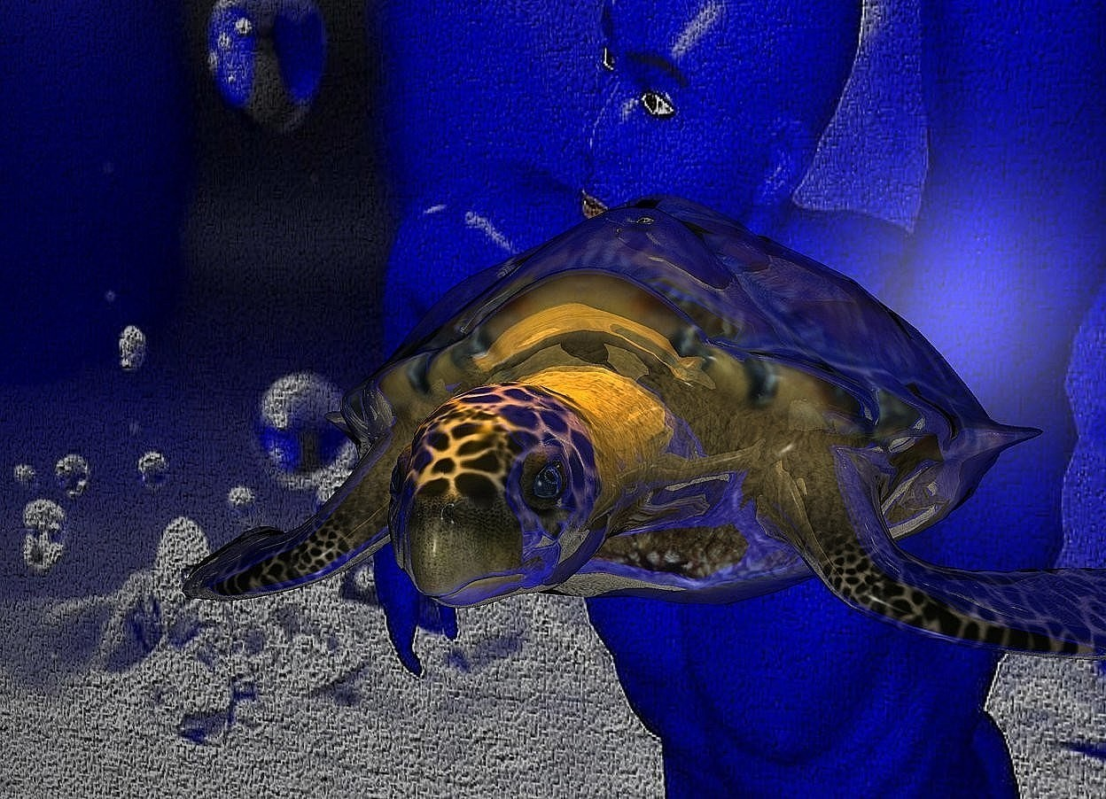 Input text: a   150 inch tall and 170 inch wide and 60 inch deep monitor.the monitor is  shiny blue.sky is gainsboro.ground is clear.a 27 inch tall shiny hawskill sea turtle is -100 inch above the monitor.two orange lights are 100 inch above the hawskill sea turtle.the screen of the monitor is 120 inch wide [splashing].it is night.