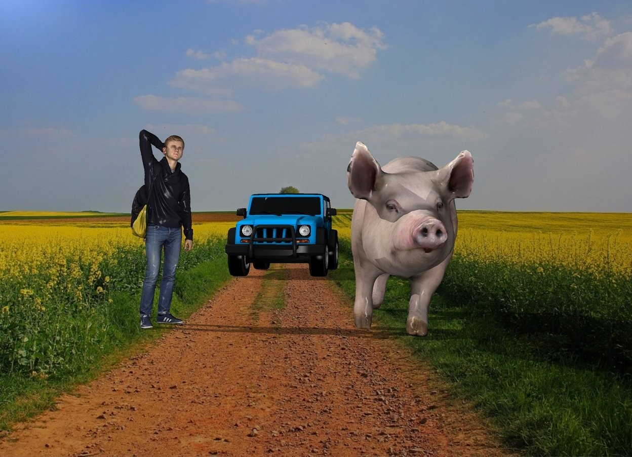 Input text: The college student is 7 feet left of the pig. The pig is 8 feet tall. The offroad vehicle is 30 feet behind the college student. The farm backdrop. The college student is 9 feet tall. The offroad vehicle is 8 feet tall. The college student is facing southeast. The pig is facing south. The offroad vehicle is facing south.
