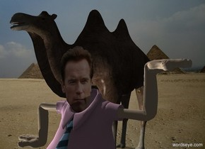 Arnold Schwarzenegger. Pyramid backdrop. A camel is behind and left of Arnold. Camera light is black. A light is 2 feet left of and in front of Arnold.