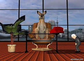 a 100 inch tall kangaroo is -80 inch above a 100 inch tall chair.backdrop is city.a 400 inch tall and 800 inch wide  black window is 400 inch behind the kangaroo.sun is white.ambient light is gray.ground is visible.ground is wood.a 50 inch tall clear table is in front of the chair.a 100 inch tall chusan palm tree is -10 inch left of the table.the stalk of the chusan palm tree is wood.a 20 inch tall maroon phone is on the table.the phone is -30 inch right of the table.the phone is facing the kangaroo.a 50 inch tall joe is 30 inch right of the table.the joe is facing the kangaroo.