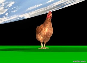 backdrop is black. 2d ground is visible. a huge [sky] circle is -1 feet above a big chicken. the circle leans to the right. ground is green. a light is 10 feet right of and 2 feet above the chicken. sun's azimuth is 270 degrees. ambient light is linen.