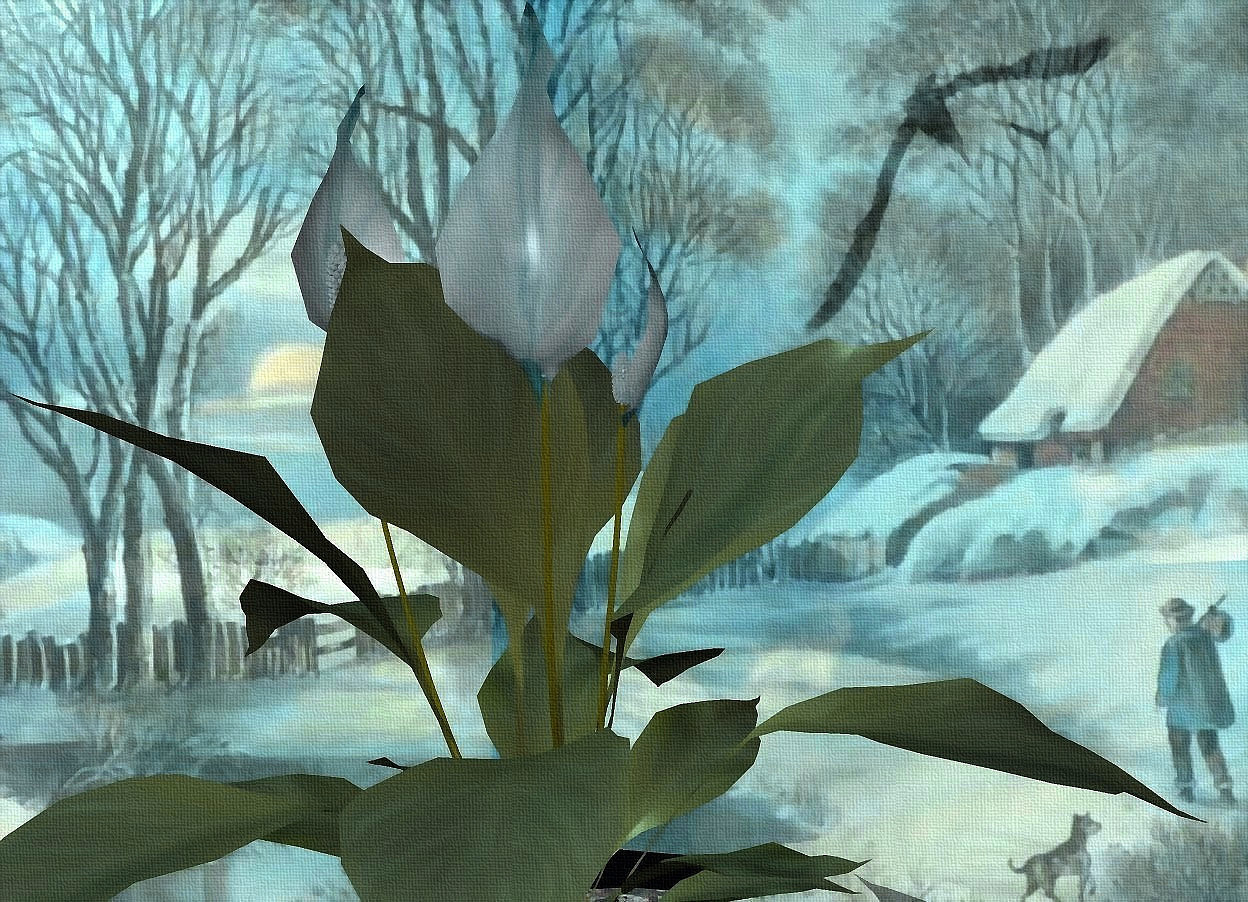 Input text: lily.a shiny [winter] backdrop.the flower of the lily is igloo blue.sky is cloud.sky is 4000 feet wide and 3000 feet tall and 3000 feet deep.sun is igloo blue.