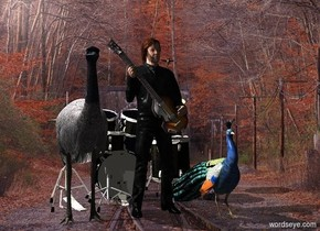 Paul McCartney is in front of a drum kit. A bird is right of McCartney. A bird is left of McCartney. Camera light is black. A light is above and left of the bird. A light is above and left of McCartney. A bird is -10.5 inch right of and -1 foot above McCartney.