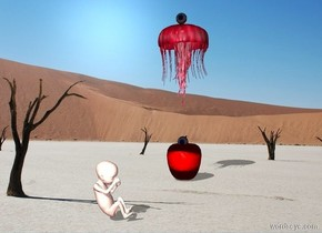 the apple is in the desert. The eye is in the apple.   The human is 19 inches left of the apple .     The human is facing front .  The eye is facing the human .    The human is 12 centimeters tall.  The pink jellyfish.  The jellyfish is 8 cm above the apple .   The 2nd eye is on the jellyfish .  The 2nd eye Is facing the human.