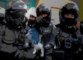 a [nt] backdrop.a 3 inch tall shiny 70% dim petrol blue dog.sky is black.