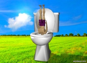 field backdrop. a toilet. the toilet is 6 inches tall. a swimmer. the swimmer is 4 inches tall. the swimmer is in the toilet. the swimmer is upside down