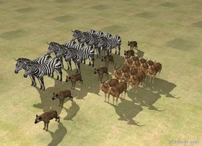 There is a pack_of_hyenas next to a herd. A herd is next to it. The ground is grass.