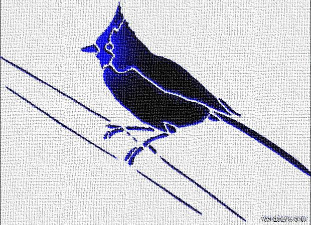 Input text: a blue [titmouse] backdrop.sun is  blue.