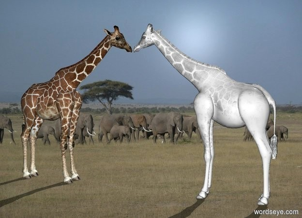 Input text: africa backdrop.a 1st white giraffe.a 2nd giraffe is 2 inches in front of the 1st giraffe.it is facing north.