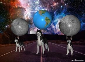 The first big Siberian Husky. The first big Siberian Husky is 2 feet from the second Siberian Husky. A big moon is above the first Siberian Husky. The earth is above the second Siberian Husky. The third big Siberian Husky is 2 feet to the right of the second Siberian Husky. A big moon above the third big Siberian Husky.