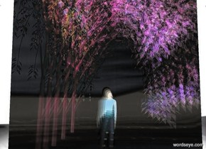 a 20 feet tall clear flat wall.a tree is 10 feet in front of the wall.clear backdrop.a 10 feet tall woman is behind the tree.a lime light is above the tree.a red light is behind the woman.the tree is rainbow.