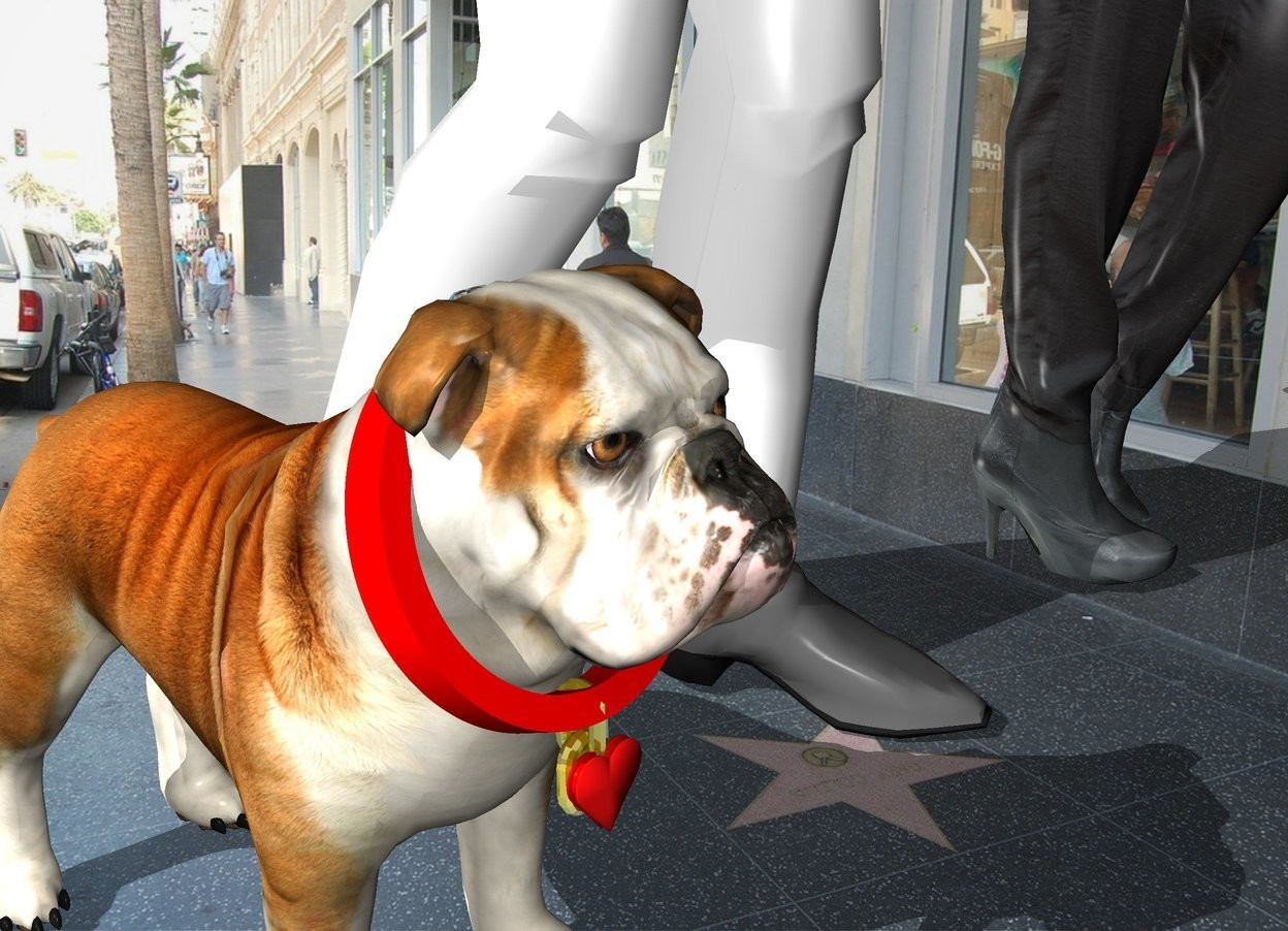Input text: The man is to the right of the dog in the city. He is walking. The woman is to the right of the man. The dog collar is -11 inches above and -8 inches in front of the dog. The dog collar is face down. It is leaning 20 degrees to the back. The extremely tiny heart is -11 inches above and -.3 inches in front of the collar.