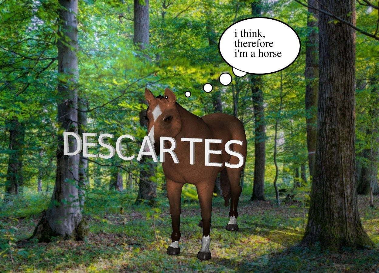 """Input text: the small """"DESCARTES"""" is in front of the horse. it is 4 feet above the ground."""