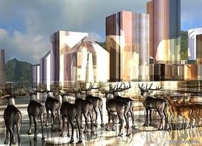 a shiny factory city block.a 1st herd is -71.1 feet above the city block.a 2nd herd is right of the 1st herd.mountain backdrop.a linen light is 1 feet behind the 2nd herd.