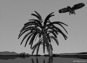 sky is shiny gray.ground is shiny black.ground is 2000 feet wide and 200 feet deep.a 100 inch tall shiny black date palm tree is on the ground.the tree trunk of the date palm tree is shiny black.a 20 inch tall shiny black crow is -20 inch above the date palm tree.the crow is -25 inch in front  of the date palm tree.the crow leans 30 degrees to the front.the crow is facing southeast.six gainsboro lights are 5 inch above the crow.