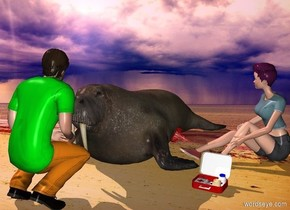 a walrus.a woman is -14 inches right of the walrus.a first aid kit is in front of the woman.a man is in front of the walrus.he is facing the walrus.the man's shirt is malachite green.pink sun.a red jellyfish is -21 inches right of the walrus.it is leaning 70 degrees to the east.the woman is facing southwest.